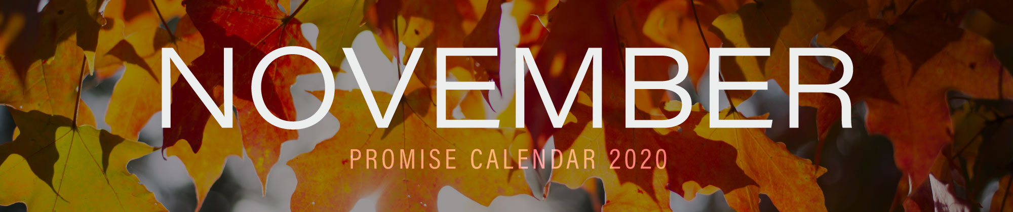 November 2020 Promise Calendar Header